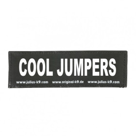 COOL JUMPERS