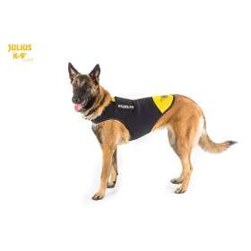 Neoprene IDC dog clothes, size: L, Harness size: 1