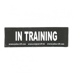 IN TRAINING - Logo small, 1 Pair!