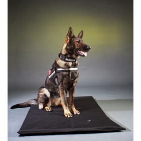 """I"" -Belt 2011 -Police dog safety belt for all..."