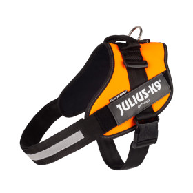 IDC-Powerharness for labels, size 3 UV orange
