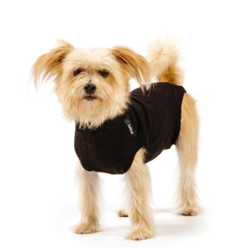 """Recovery Suit """"S"""" Black, Dog"""