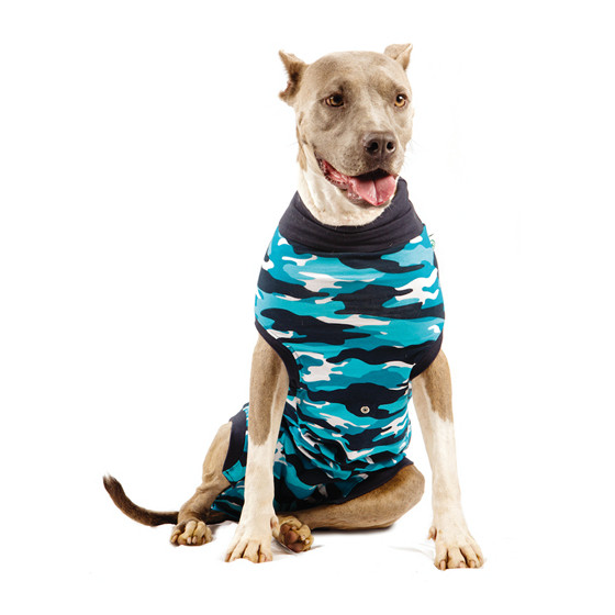 """Recovery Suit """"L"""" Camouflage blau Hund"""