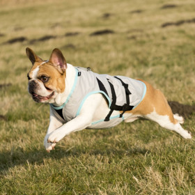 """Suitical cooling waistcoat for dogs """"S"""" DRY cooling Vest"""