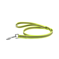 Color & Gray - Gumierte leine - Neon-grau 20mm/1,2 m...