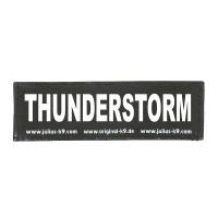 THUNDERSTORM - Logo klein, 1 Paar!